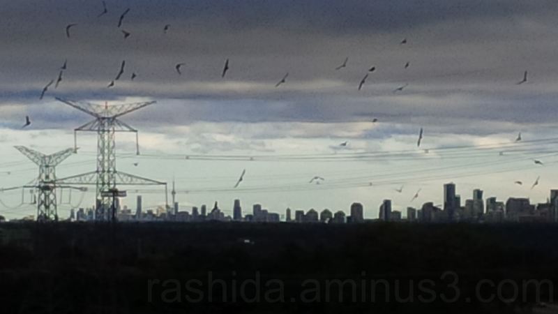 CN Tower 03