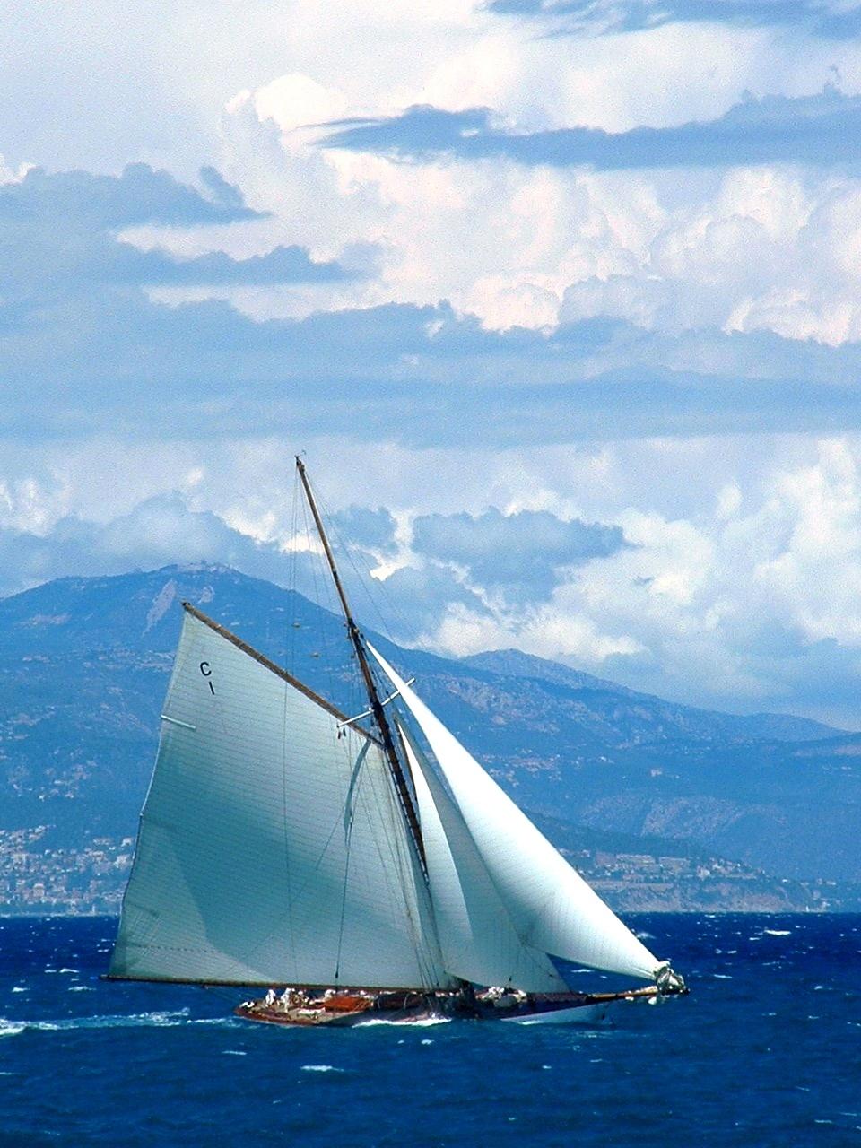 Voiles d'Antibes: Sloop.