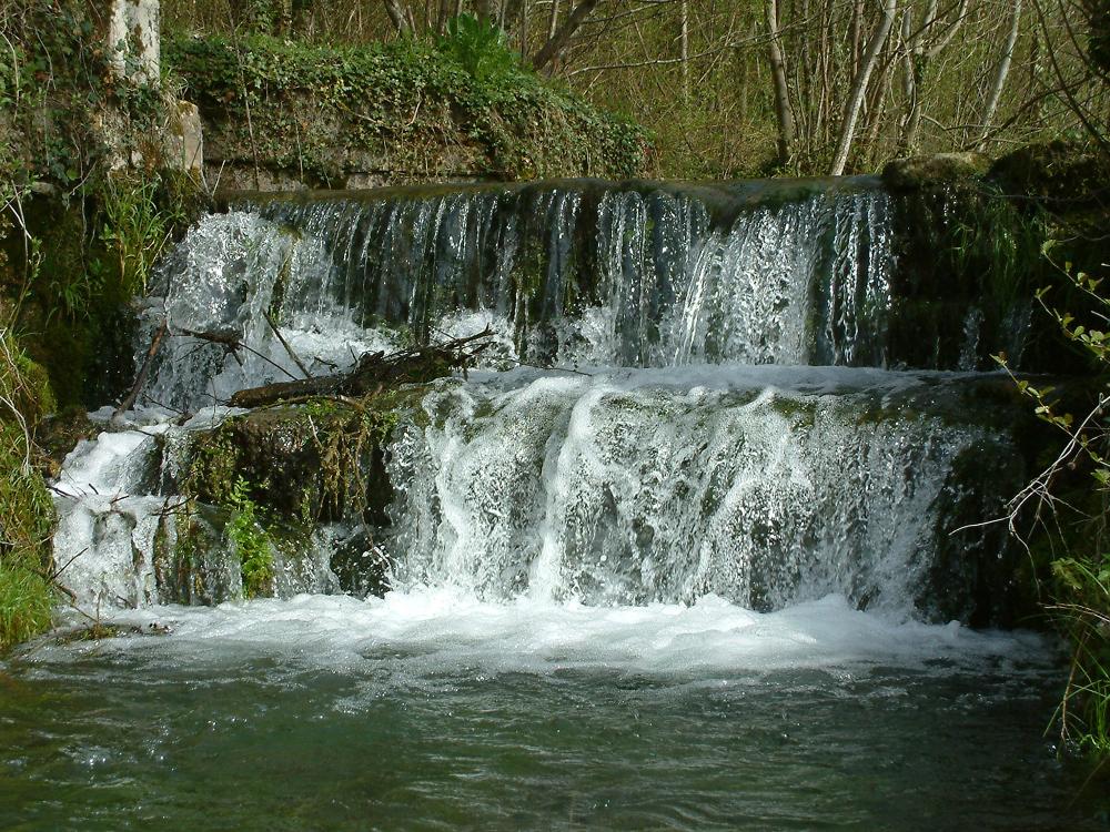 L'eau ..... source de vie