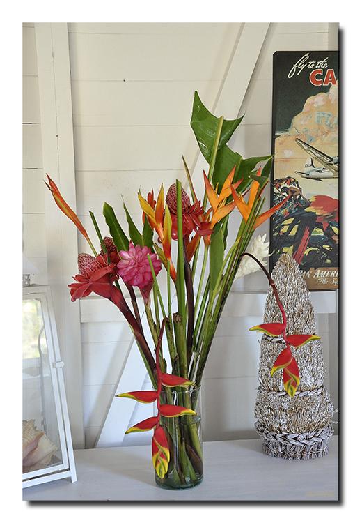 Le bouquet des iles