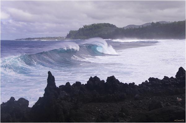 La vague en formation