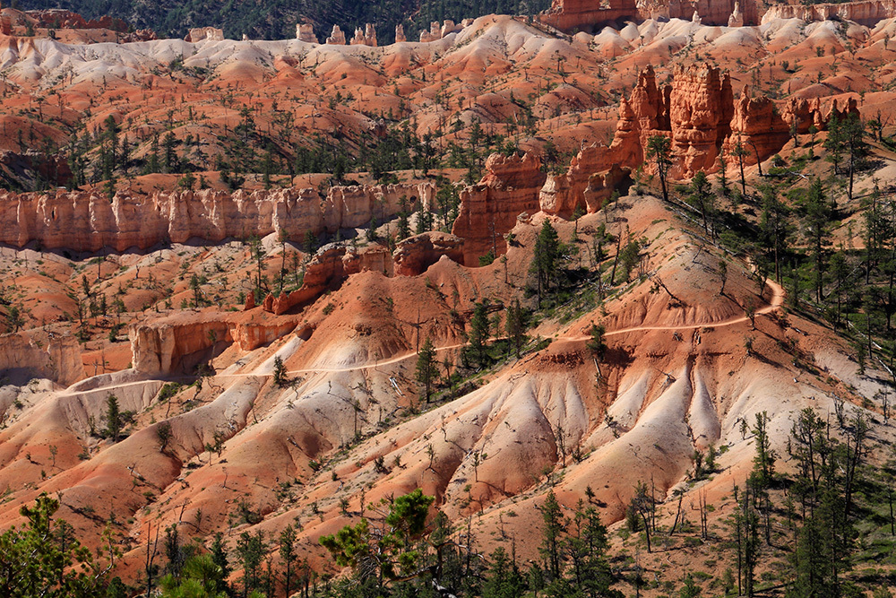 Fairyland Trail in Bryce CanyonT