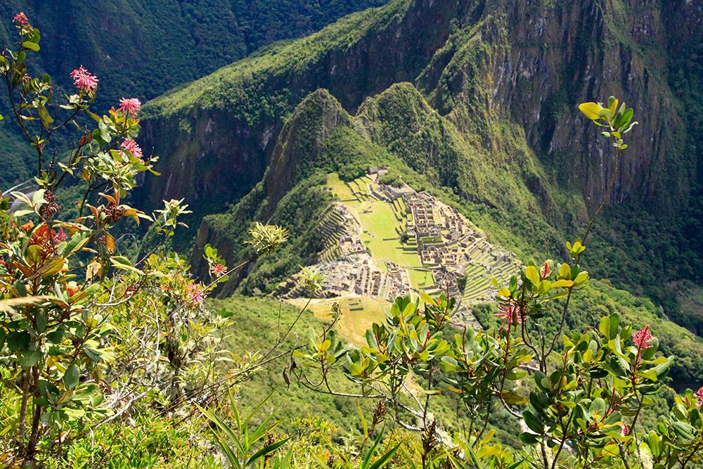 Machu Picchu from the summit