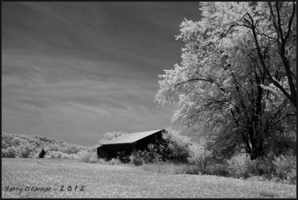 An infrared photo of a metal roofed barn