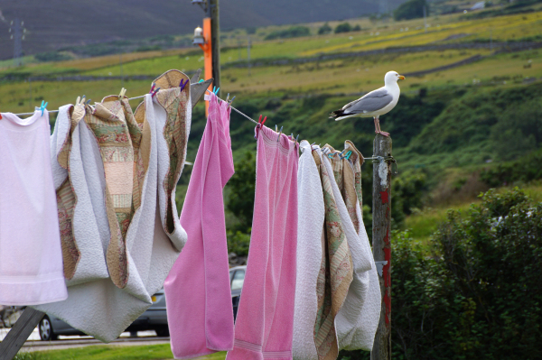 Jour de lessive/ Washing day