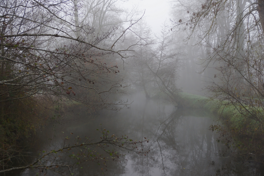 La dronne dans la brume