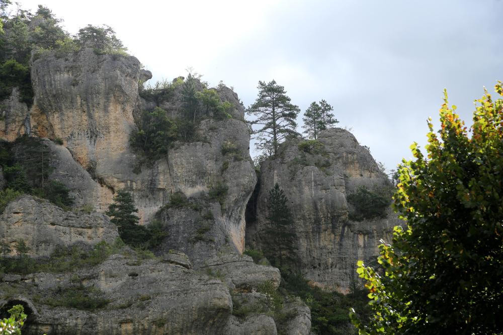 Gorges du Tarn 3
