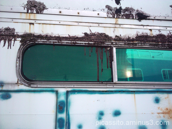 Horse Trailer Window