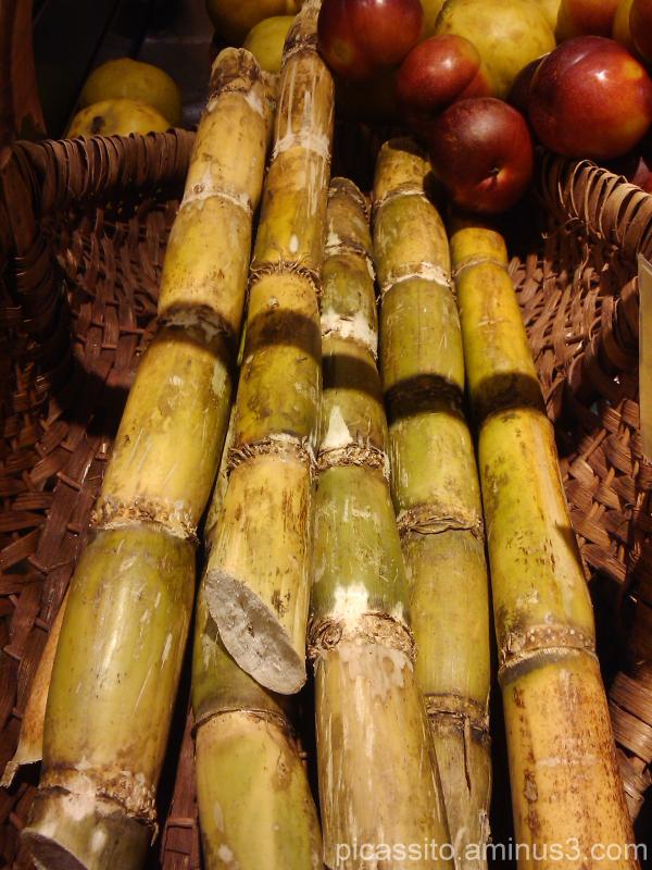 Sweet Sugar Cane