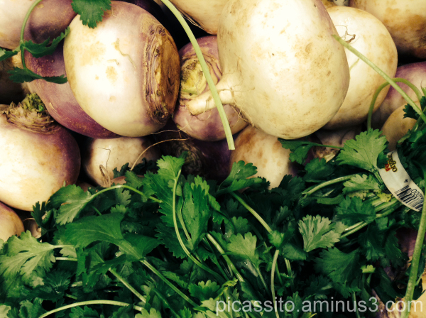 Turnips in the Grass