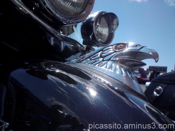 Motorcycle Eagle