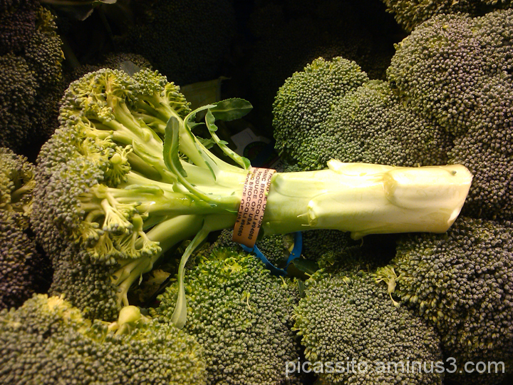 Reclining Broccoli