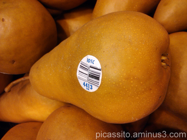 Bosco Pear