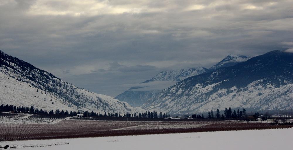 Winter scenery.