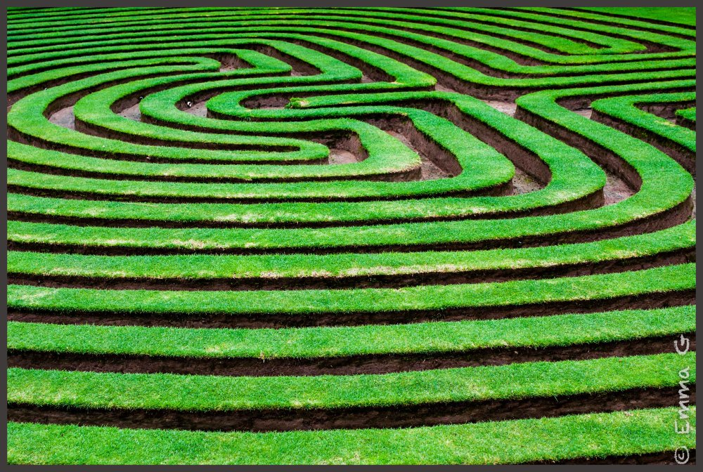 Cockington Green - Maze