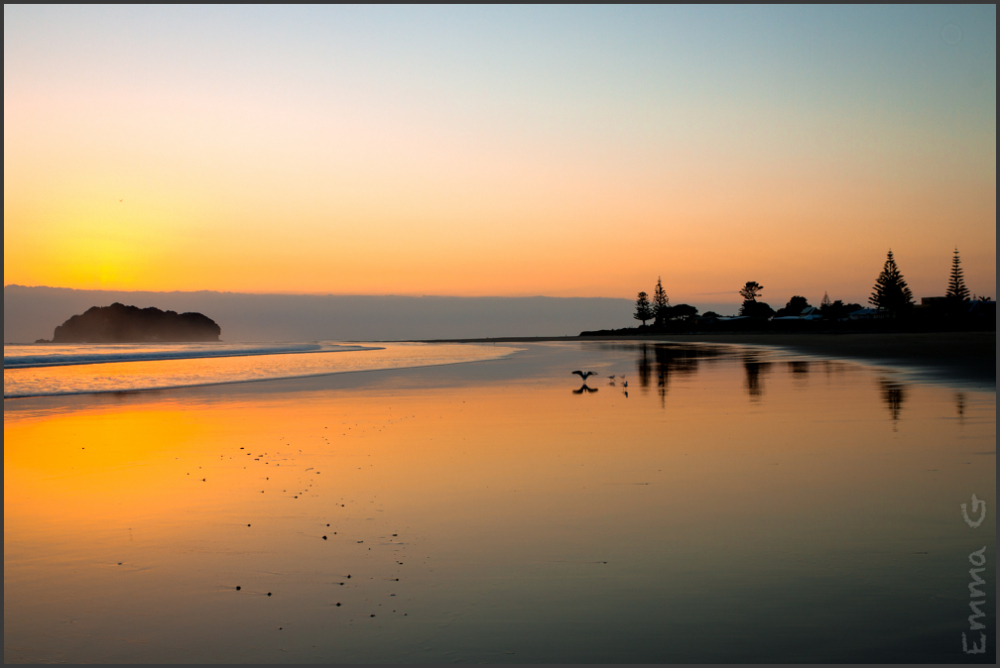 Whangamata Beach Sunrise