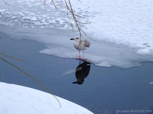 Gone fishing (1)