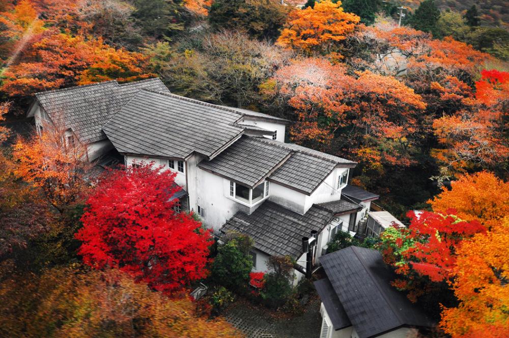 Mountainside Home