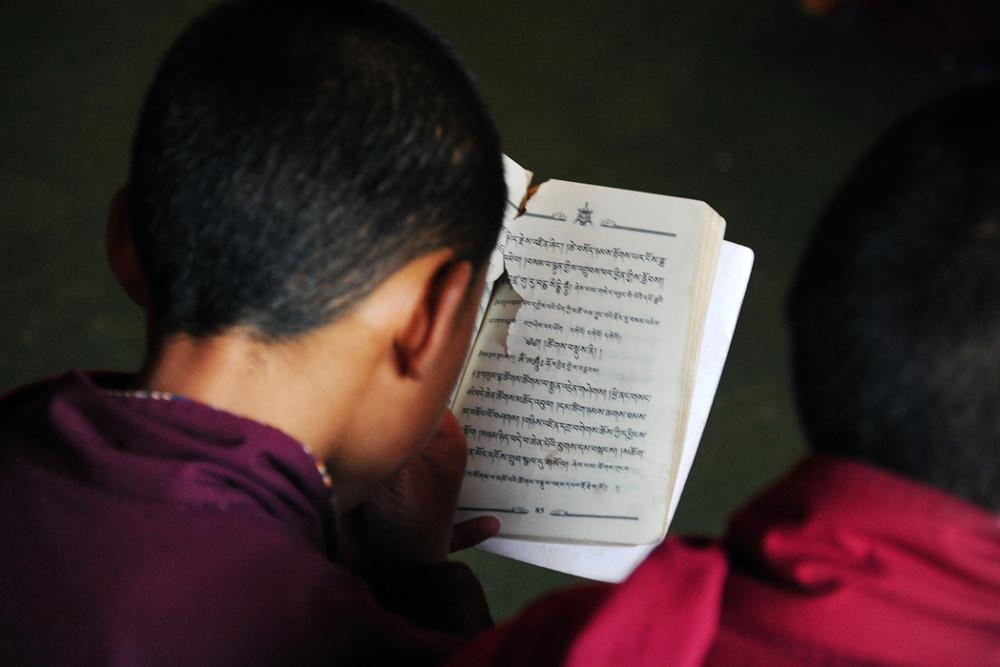 Novice Reading Scripture