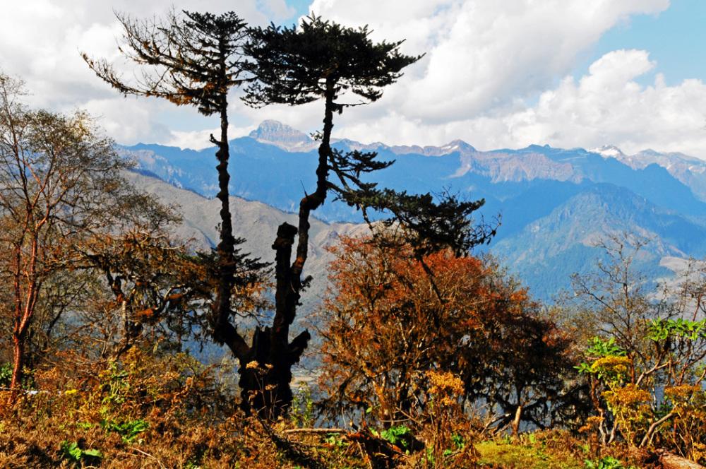 Nawala Pass - Bhutan