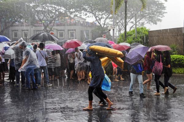 A Sudden Downpour