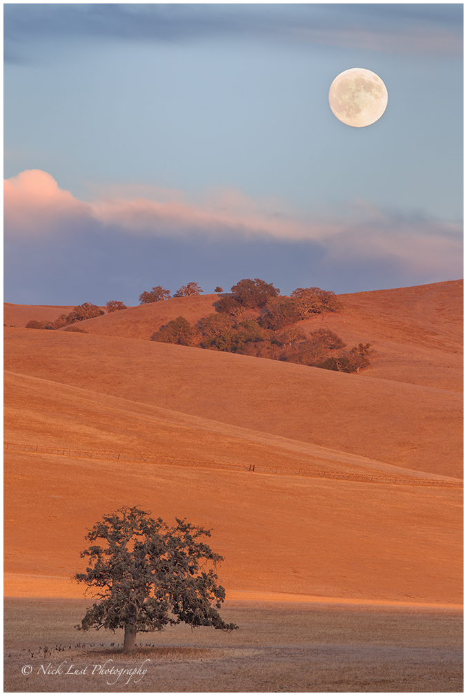 super moon, moon rise, california