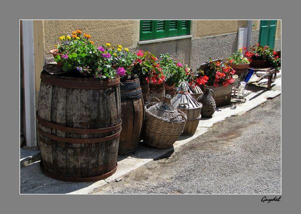 Tonneaux, Bonbonnes et Bouteilles ... fleuries !