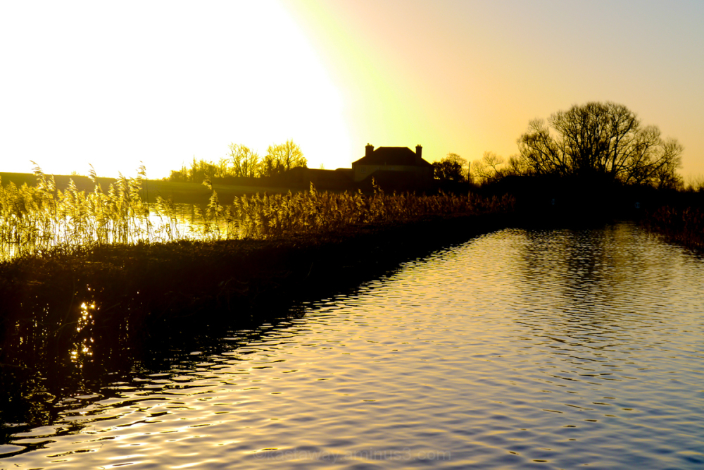 Muchelney floods sunrise 2014