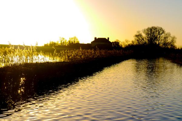 Muchelney floods sunrise 2014