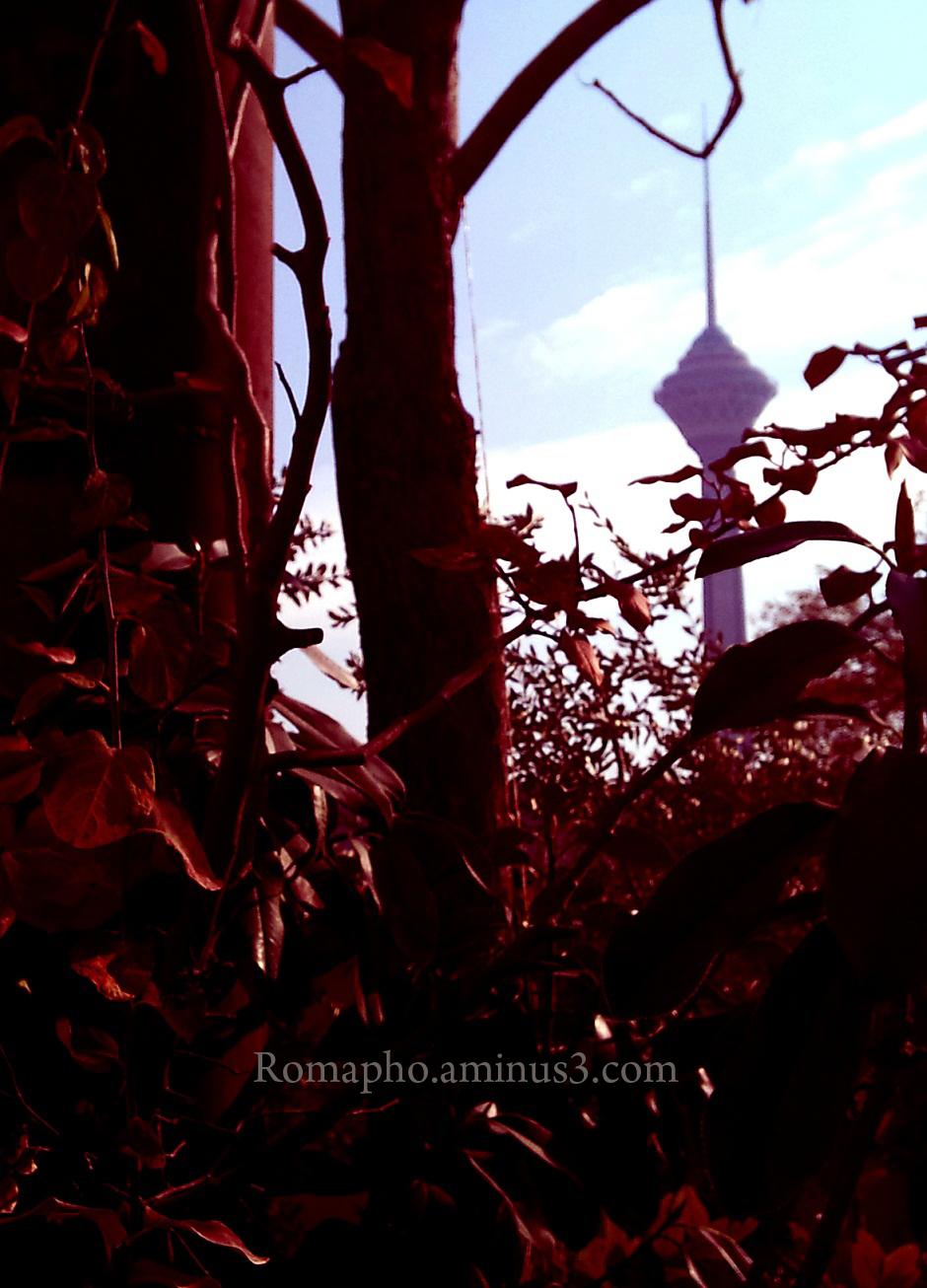 Milad tower in west of Tehran :)