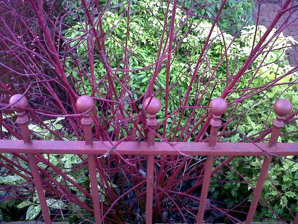 Chameleon fence