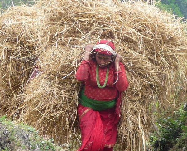 Anapurna trek Nepal Asia 6