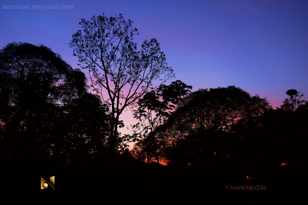 aaanouel costa rica sunset finca farm zorro ranch