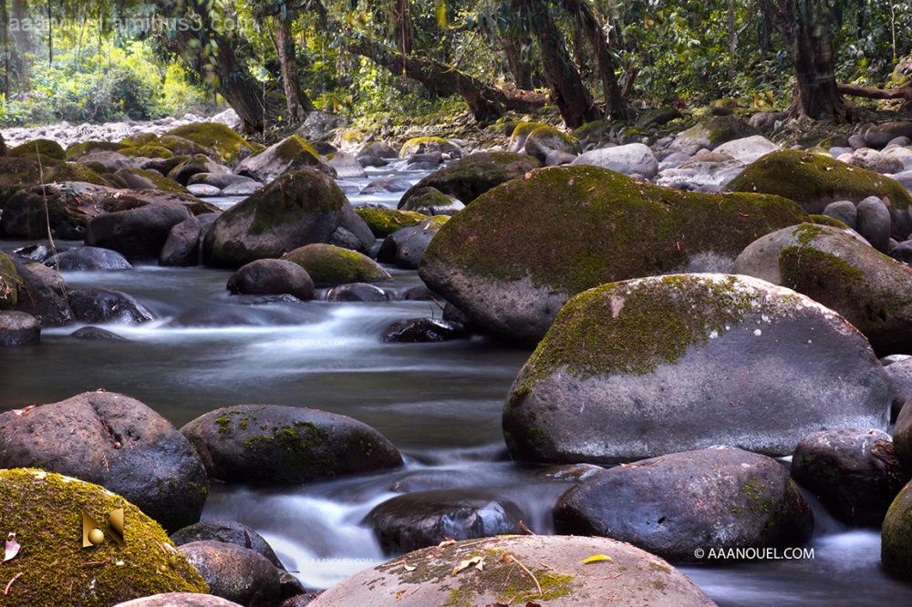 aaanouel costa rica river finca farm zorro stone