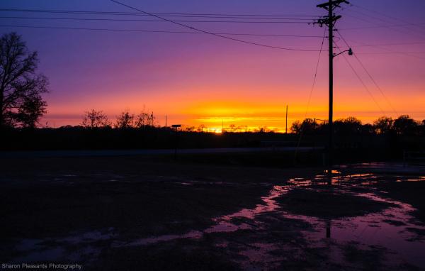 Sunset to ponder