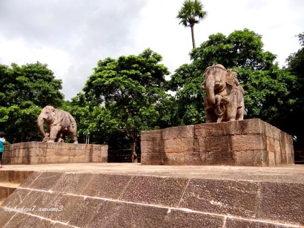 Sun Temple Konark  15