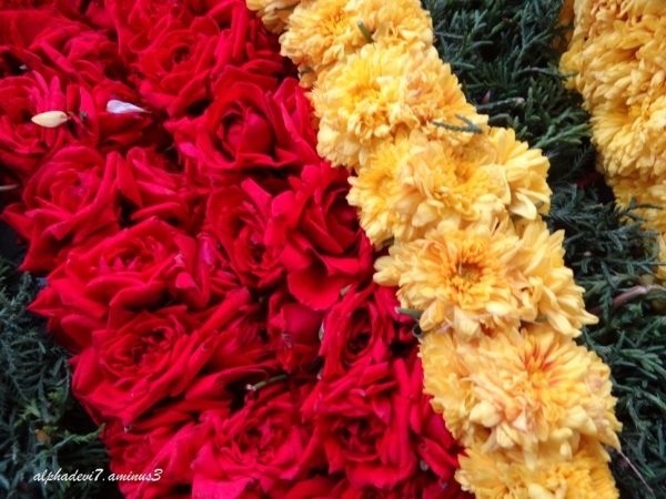 The close up of the garlands
