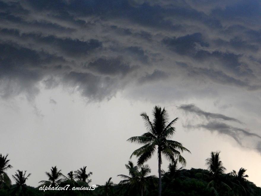 Monsoon moments
