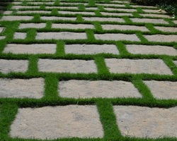 The rectangles  and grass