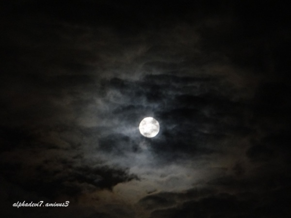 The monsoon Moon  1