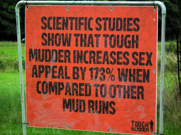 Scientific Studies.....