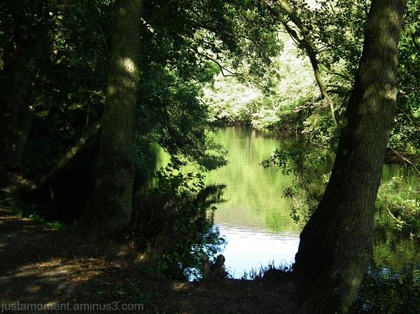 The River Derwent Derbyshire.