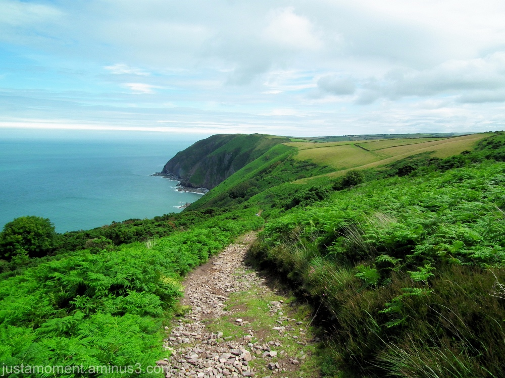 North Devon Coast Path.