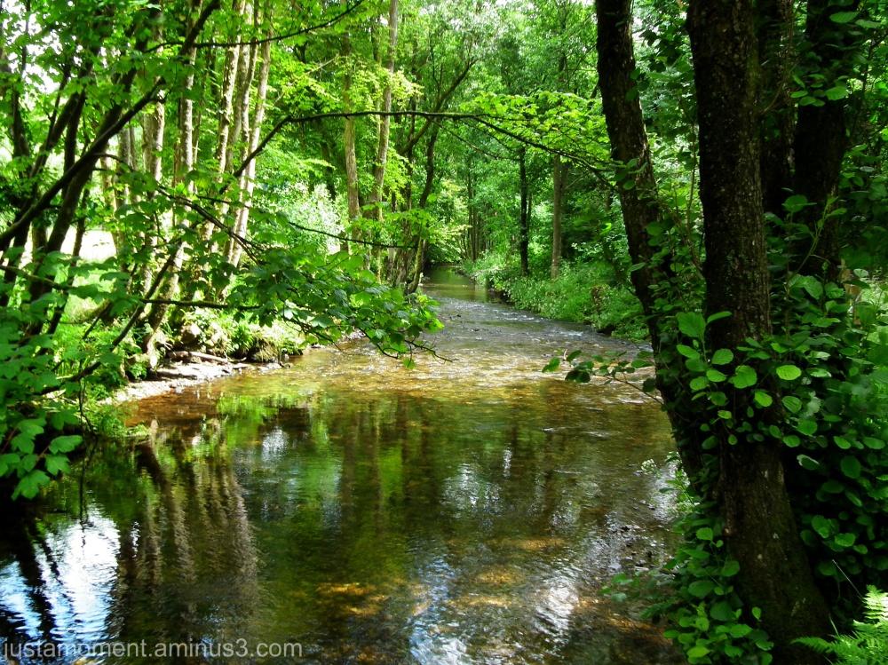 Looking downstream.