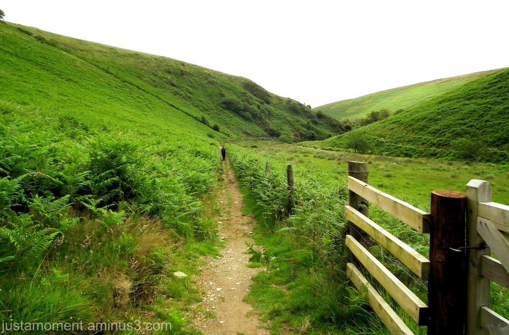Walking Exmoor.