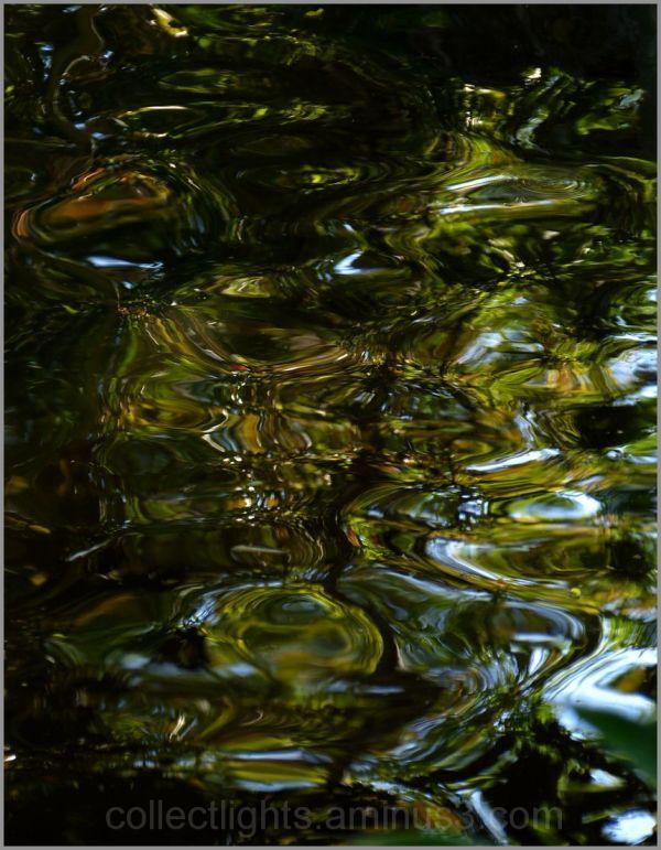En eaux troubles 2/...