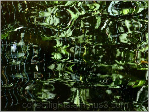 En eaux troubles 7/...