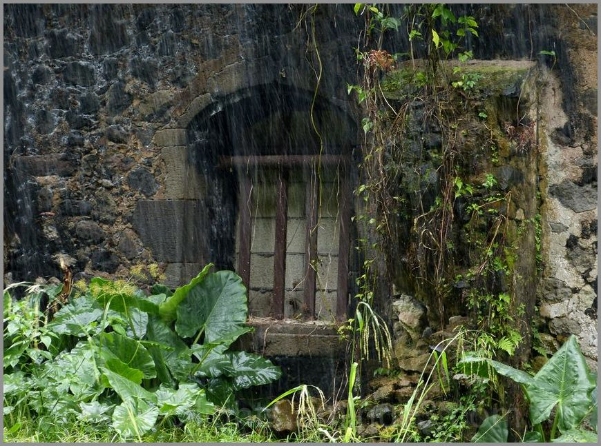 Fenêtre murée sous la pluie tropicale