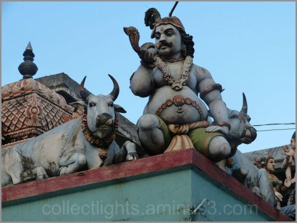 Le temple de Muthumariamman à Matalé  6/...