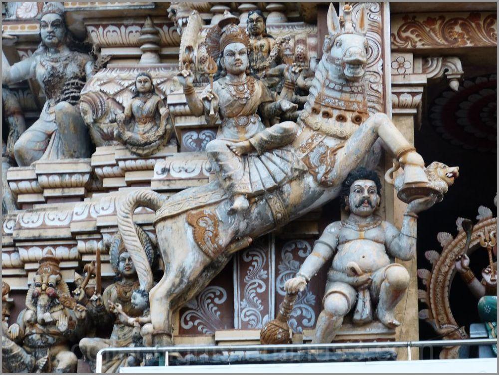 Le temple de Muthumariamman à Matalé  7/...